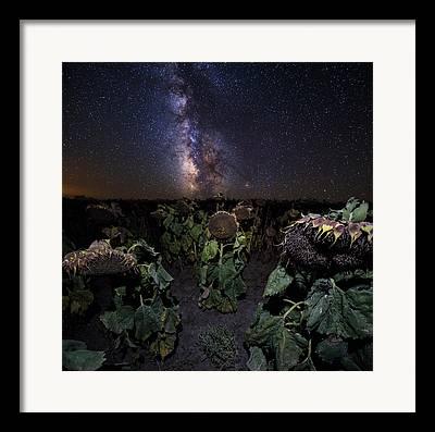 Zombies Vs Plants Framed Prints