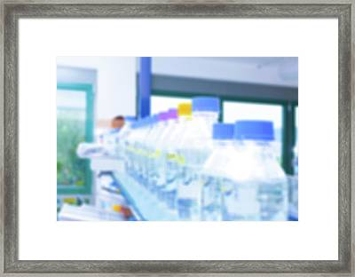 Plastic Bottles In Lab Framed Print by Wladimir Bulgar