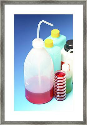 Plastic Dispensing Bottles And Containers Framed Print by Wladimir Bulgar