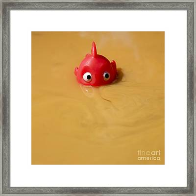 Plastic Fish In Some Polluted Water. Framed Print