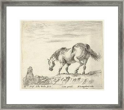 Plate 4 A Horse In Profile Facing Framed Print by Stefano della Bella