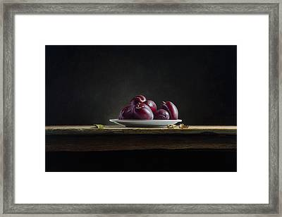 Plate With Plums Framed Print by Mark Van crombrugge