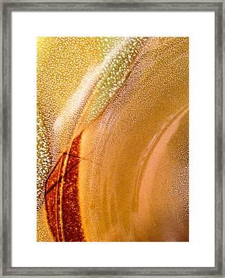Plate World I Framed Print by Sherri Cavalier