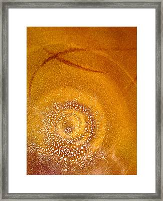 Plate World IIi Framed Print by Sherri Cavalier