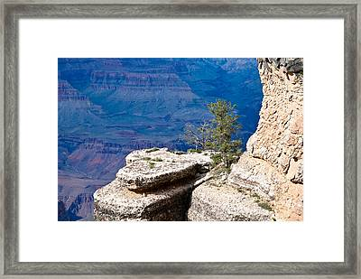 Plateau In Canyon Framed Print by Nickaleen Neff