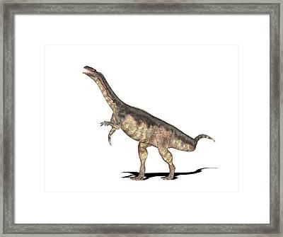Plateosaurus Dinosaur Framed Print