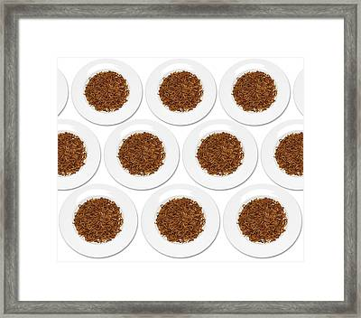 Plates Of Mealworm Framed Print