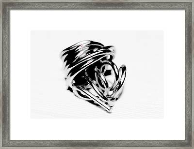 Platinum Bundle Framed Print