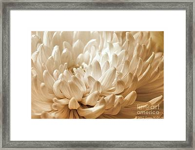 Platinum Mum Framed Print