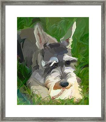 Play Ball Framed Print by Patti Siehien