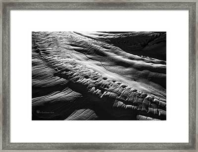 Play Of Light And Shadow. Framed Print