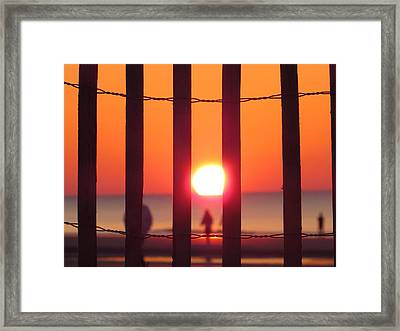 Framed Print featuring the photograph Play Through The Fence by Nikki McInnes