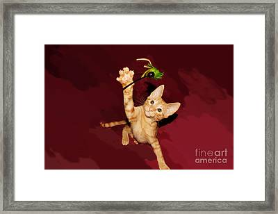 Play Time Framed Print by Lynda Dawson-Youngclaus