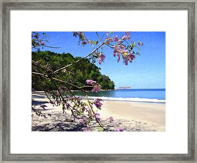 Playa Espadillia Sur Manuel Antonio National Park Costa Rica Framed Print by Kurt Van Wagner