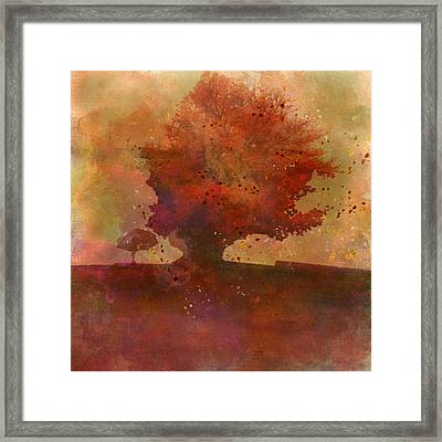 Playfall Framed Print by Jean Moore