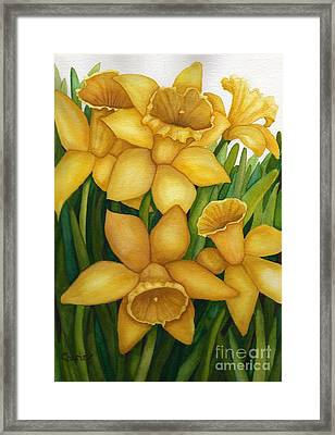 Playful Daffodils Framed Print by Vikki Wicks