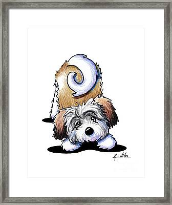 Playful Havanese Framed Print