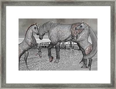 Playful Inspirations Framed Print