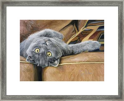 Playful Framed Print by Lucie Bilodeau