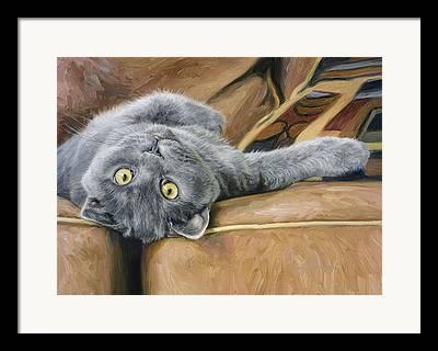 Domestic Short Hair Cat Framed Prints