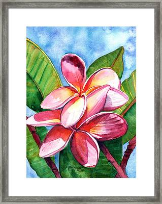 Playful Plumeria Framed Print