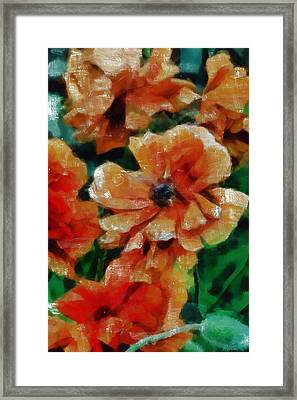 Playful Poppies 7 Framed Print by Angelina Vick