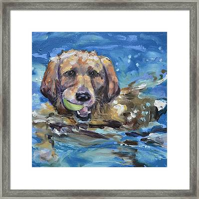Playful Retriever Framed Print