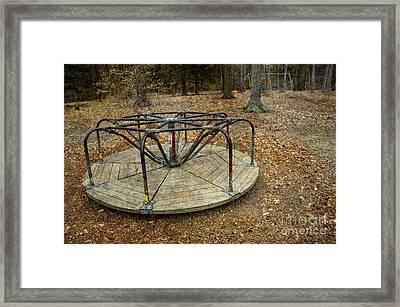 Playground In The Woods Framed Print