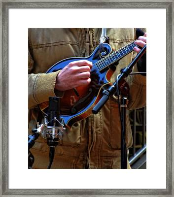 Playing Mandolin Framed Print by Dan Sproul