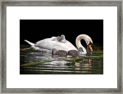 Playtime And Learning Framed Print