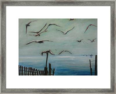 Playtime Framed Print