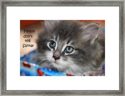 Please Don't Tell Santa Kitten Framed Print