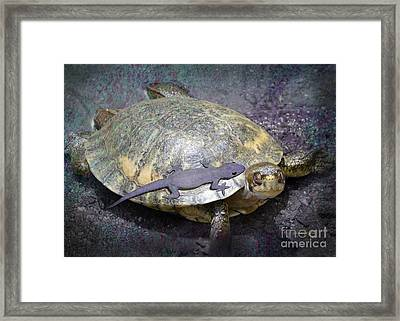 Please Share The Journey Framed Print by Audra D Lemke