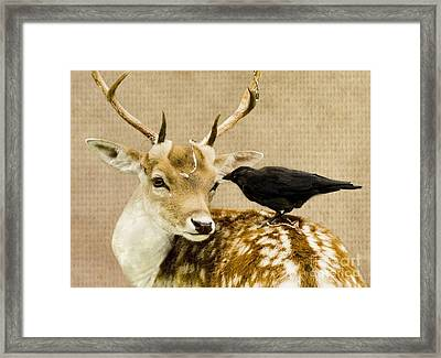 Please Sir Can I Have Some More? Framed Print
