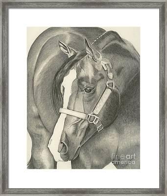 Pleasure Horse Framed Print by Denise Gordon