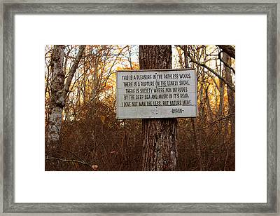 Pleasure In The Pathless Woods Framed Print by Andrew Pacheco