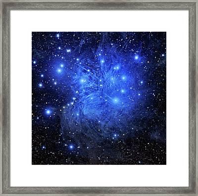 Pleiades Star Cluster Framed Print by Tony & Daphne Hallas