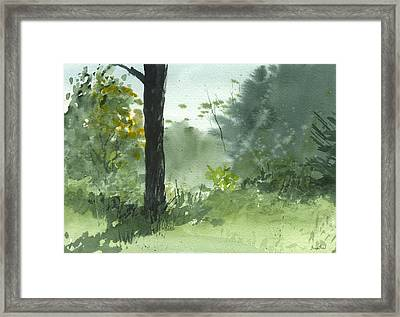 Plein Air 8-1-13 Framed Print by Sean Seal