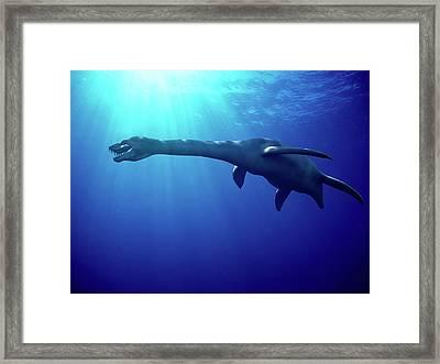 Plesiosaur Framed Print by Christian Darkin