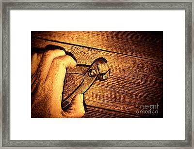 Pliers Framed Print by Olivier Le Queinec