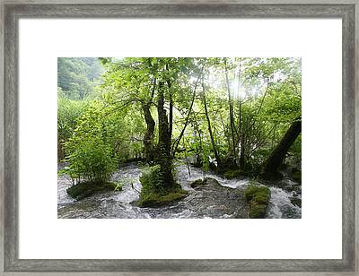 Framed Print featuring the photograph Plitvice Lakes by Travel Pics