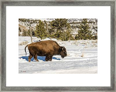 Plodding Through The Snow Framed Print