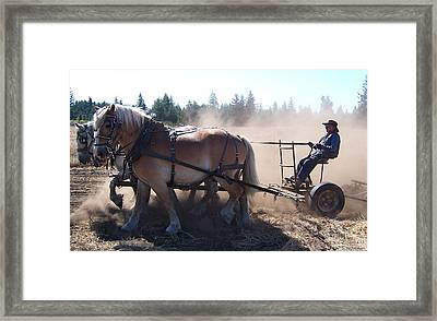 Plough Horses At Work Framed Print