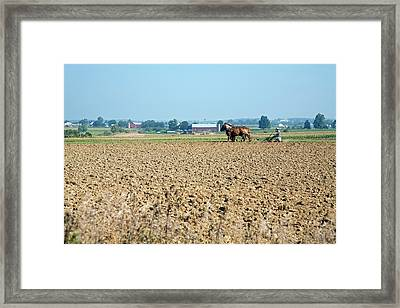Ploughing On An Amish Farm Framed Print by Jim West