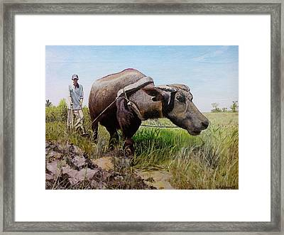 Ploughing Framed Print by Ronald Lopez