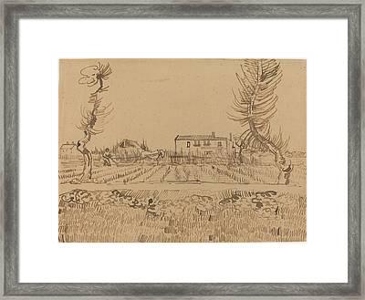 Ploughman In The Fields Near Arles Framed Print