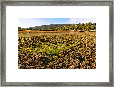Plowed Field In Provence Framed Print