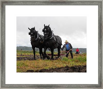 Plowing At The Local Match Framed Print