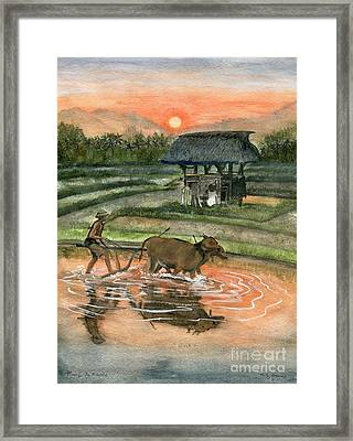 Plowing The Ricefield Framed Print