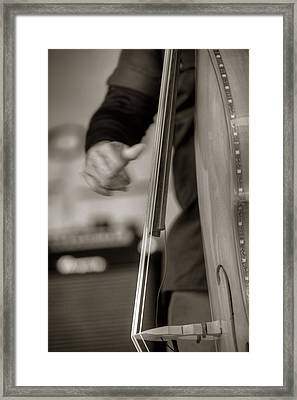 Pluckin' Framed Print by Steve Gravano